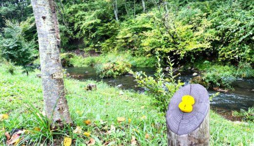 KARUIZAWA CAMP GOLDでの体験をブログレポート!